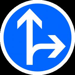 Panneau d'obligation directions tout droit ou à droite B21D1
